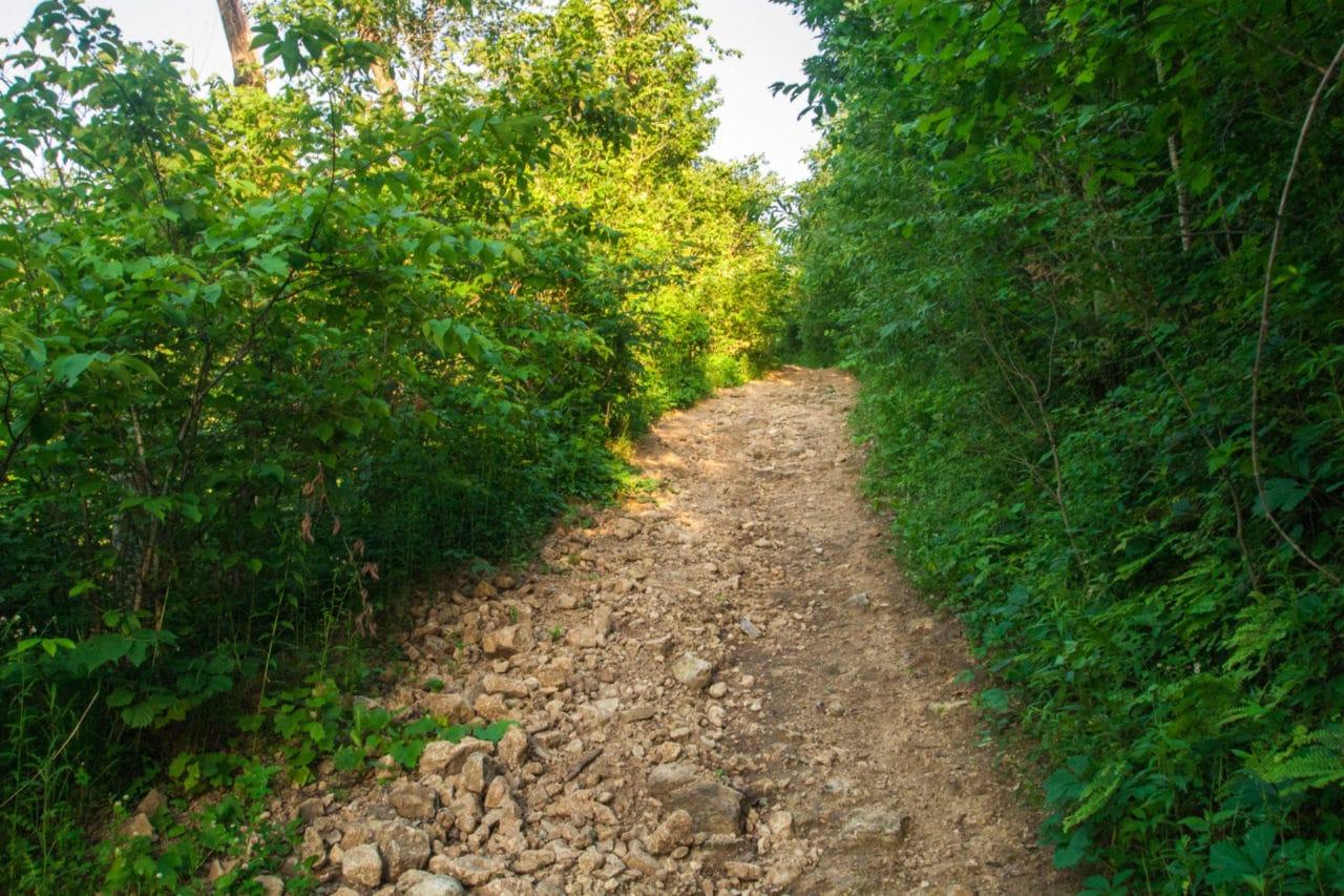 Rough terrain photo